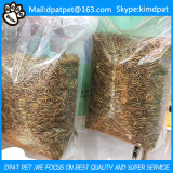 High Protein Pet Food Dried Mealworm