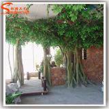 Árvore artificial do Ficus do Banyan da decoração Home