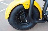 """2 rodas fora do """"trotinette"""" esperto do retrocesso de Citycoco da estrada com 1000W"""