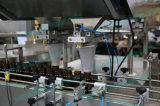 Chaîne de production de mise en bouteilles de tablette de capsule (PPL-100A)