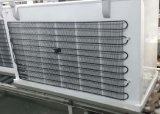 Congelatore aperto della cassa del portello della grande parte superiore di formato singolo