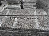 O melhor preço Popular chinês polido de granito vermelho G664 em granito da Pedra de Pavimentação