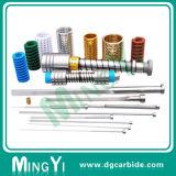 Qualitäts-Plastikspritzen-Metallplättchen-Kern-Gerät
