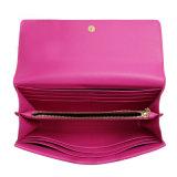 Disegni casuali e funzionali della borsa per le collezioni delle signore