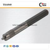 Werksgesundheitswesen ISO9001 zugelassene CNC-maschinell bearbeitenarmaturen-Welle
