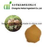 El 20% natural--Polvo de Blazei Muril del Agaricus de los polisacáridos del 50%, extracto de Blazei del Agaricus