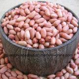 Venta caliente escaldados los granos de maní de Shandong China