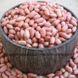 Hot Sale Blanced Peanut Kernels De Shandong China