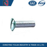 Hot Sale Stainless Steel Slotted Countersunk Head Self Tapping Screw