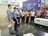 중국 일본 Panasonic 모터를 가진 최상 기계장치 CNC 포탑 펀칭기