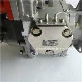 Pomp van de Brandstof van het Deel van de Dieselmotor van Cummins 3070123 voor K19 de Motor van Nt855
