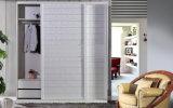 Настраиваемые деревянный шкаф сдвижной двери с двумя спальнями (zy-044)