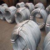 ElektroGalvnaized Eisen-Stahldraht (10G/M2 zu 30G/M2)