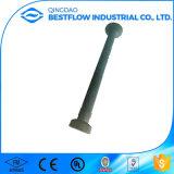 Ancoraggio di sollevamento dell'acciaio inossidabile/ancoraggio del piede
