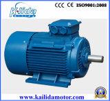 水ポンプのための200kw三相誘導の電気モーター