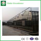 De anti-uv TuinbouwSerre van het Glas voor het Groeien van de Bloem