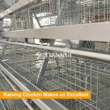 Клетка батареи курочки цыпленка 4 ярусов Tianrui польностью автоматическая