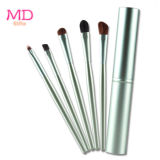 Premium 5pcs conjunto de cepillos cosméticos con el tubo (HERRAMIENTA-119)