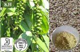 Extracto natural de la pimienta negra del 100% de Kingherbs: Piperine el 50% a el 99%