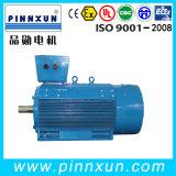 Электрический двигатель 230kw Water Pump Motor