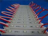 IP65 2835 3LEDs LED Baugruppe für Signage-Beleuchtung