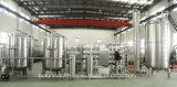 Wasser-Produktionszweig Reinigung-Pflanze beenden mit RO-System