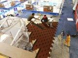 Südafrika-mit zwei Schlafzimmern SGS Diplommodernes vorfabrizierthaus
