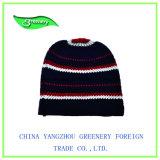 若草色のジャカード冬の帽子のニットの帽子