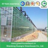 長期使用を用いる野菜栽培の情報処理機能をもったガラス温室
