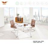Таблица конференции конференц-зала офисной мебели (H30-0370)