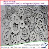 고강도 탄소 강철 HDG F436/Stainless 강철 DIN125 편평한 세탁기, 보통 세탁기, Mediun 세탁기
