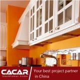 ベロナの現代様式によってインポートされるプラスチック通風管PVC食器棚(CA09-17)