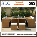 Tableau extérieur populaire réglé de Tableau de rotin du rotin Furniture/PE mis (SC-A7199-H)