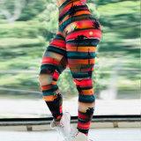 2020 ODM OEM grossista Custom Perneiras Sportswear Forma Manufactur esticar as mulheres Perneiras Butt of Barriga Calças de ioga de Controle de Elevação
