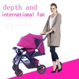 Facile mettere o indicare, passeggiatore d'acciaio pieghevole e ad alto tenore di carbonio del bambino