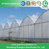 농업 식물성 꽃 및 과일을%s 다중 경간 필름 온실
