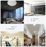 Lampe moderne neuve de plafond de l'économie d'énergie DEL pour le restaurant d'hôtel