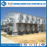 Het Huis van de Lagen van de Kip van de Loods van het Landbouwbedrijf van het Gevogelte van de Structuur van het staal