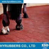 馬または体操の骨のタイルのための高品質の犬用の骨のゴム製タイル