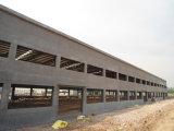 Atelier de structure métallique avec le mur en béton (KXD-SSW276)