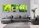 La pittura di parete moderna di vendita calda delle 3 parti lapida e lascia a pittura la maschera decorativa domestica di arte della parete verniciata sulle stampe Mc-194 della casa della tela di canapa