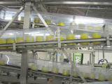 Linha de produção pó do pó de leite do bebê de leite da planta de produção do pó de leite que processa a maquinaria