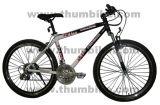 Mountain Bicycle (TMM-26BG)