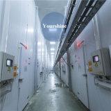 - Niedrige Temperatur-Kaltlagerung des Grad-15~-25/Kühlraum für das Speichern der gefrorenen Produkte