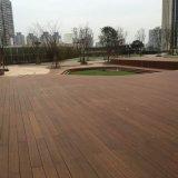 Suelo de bambú al aire libre del nuevo diseño con el bambú tejido hilo
