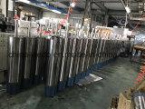 6sp30-25高品質の浸水許容の水ポンプ