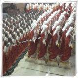 Fabrik-kundenspezifische Qualitäts-Polyharz-Statuen, katholische Statuen, fromme Statuen (IO-ca_samples)