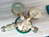 Gasdruck-Regler-Sauerstoff-/Acetylen-/Propan-Regler mit hohem Qaulity!