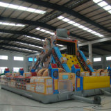 Grand château gonflable pour les enfants (FC-001)