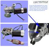 24V moteur laissé et bien balayé de 250W de fauteuil roulant électrique de pivot de moteur et de fauteuil roulant de pouvoir